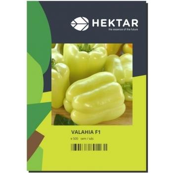 Semințe ardei gras Valahia F1 (AS5-332 F1) - 500 sem, HEKTAR