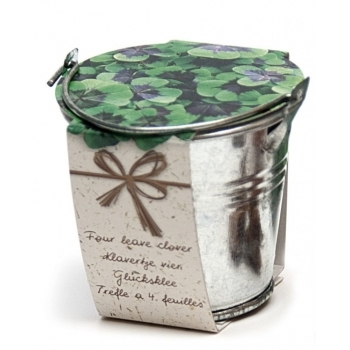 Kit pentru gradinarit, cadoul verde - Oxalis, Sam Van Schooten