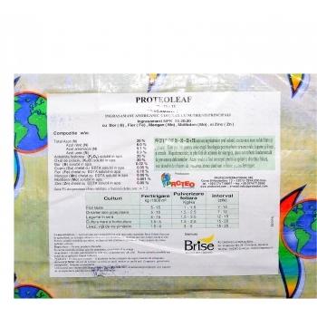 Ingrasamant solubil in apa, cu aplicare foliara si fertirigare,  Proteoleaf 20.20.20+TE, 25 kg, BriseGroup #2