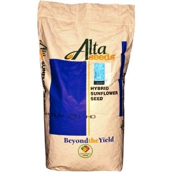 Seminte floarea soarelui Hysun 231 CL HO(150.000 sem/sac), Alta Seeds