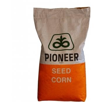 Seminte porumb P9903 (80.000 sem/sac), Pioneer