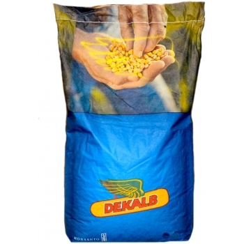 Seminte porumb DKC 4608 (80.000 sem/sac), Monsanto