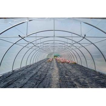 Solar tunel 8x34 m, o folie #4