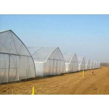 Solar gotic cu pereti verticali 10x30 m, folie dubla inflata #7