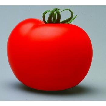 Seminte tomate Cristal F1(5 gr) Clause
