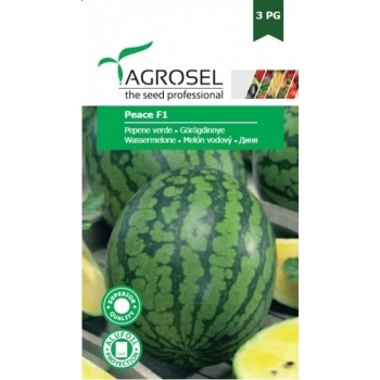 Seminte pepene verde Peace F1(0.5 gr), Agrosel, 3PG #2