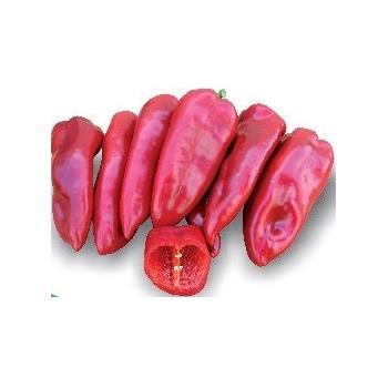 Seminte ardei gras hibrid Kaptur F1(100 seminte), Seminis