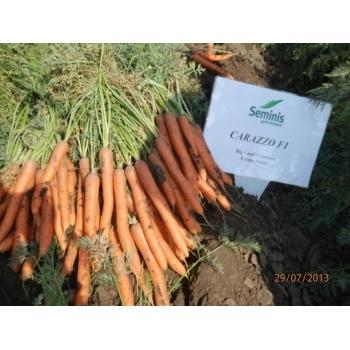 Seminte morcovi Carazzo F1(100.000 seminte), Seminis