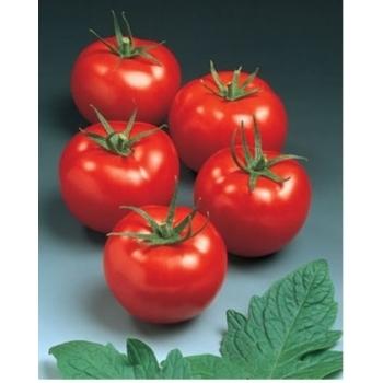 Seminte tomate Sympathie F1(5 gr), Seminis