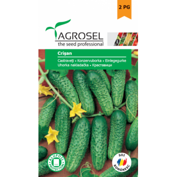 Seminte castraveti Crisan, Agrosel, 2PG