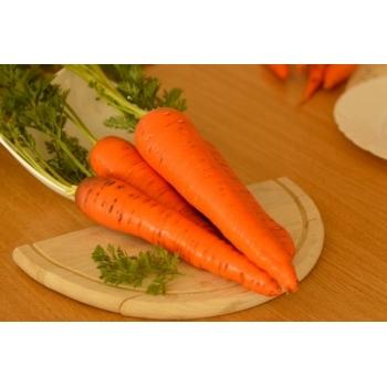 Seminte morcovi Flakker(100 gr), Agrosel