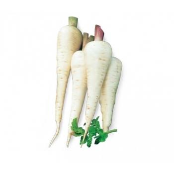 Seminte pastarnac White Gem(250 gr), Agrosel