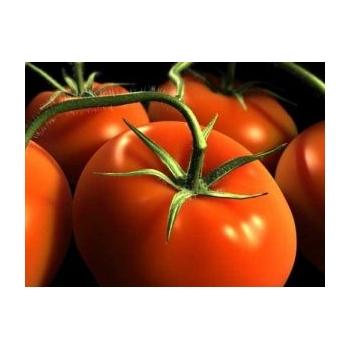 Seminte tomate hibrid Marissa F1(100 sem) Seminis