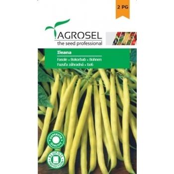 Seminte fasole oloaga Ileana(250 gr), Agrosel