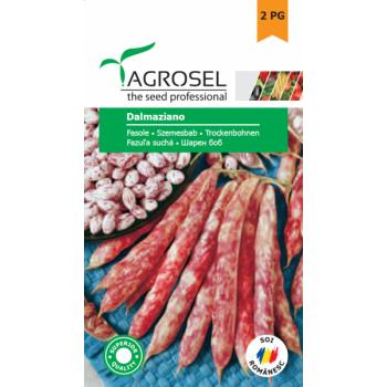 Semine fasole Dalmaziano(250 gr), Agrosel