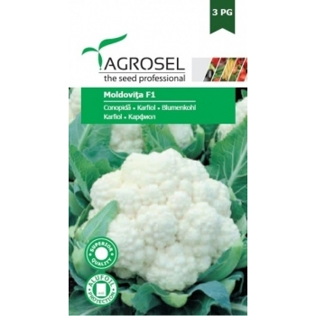 Seminte conopida Moldovita F1(150 sem), Agrosel, 3PG