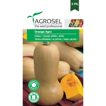 Seminte Dovleac Orange Agro(5 gr), Agrosel, 3PG