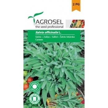 Seminte Salvia(2.5 gr), Agrosel, 2PG