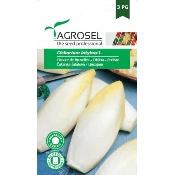 Seminte Cicoare di Bruxelles(5 gr), Agrosel