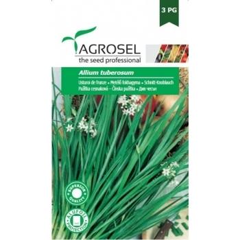Seminte Usturoi de frunze(4 gr), Agrosel