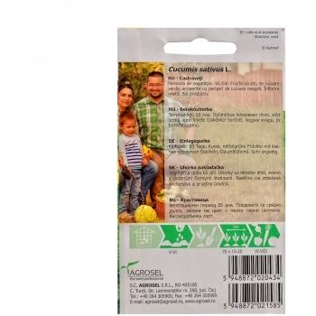 Seminte Castraveti Wisconsin SMR 58( 5 gr),  Agrosel #2