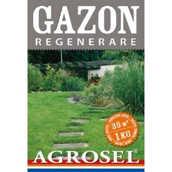 Seminte gazon regenerare (1000 gr) Agrosel