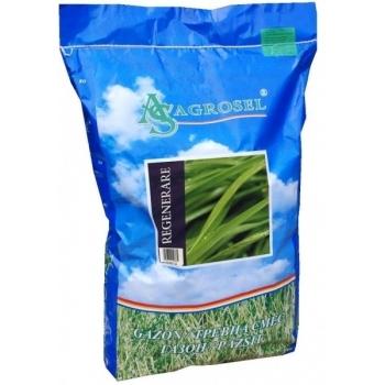 Seminte gazon regenerare (10 kg) Agrosel