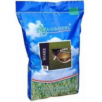 Seminte gazon Soare (10 kg) Agrosel