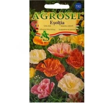 Seminte flori Esoltia melanj (1gr) Agrosel