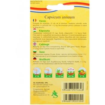 Seminte Varza Ditmarsker 2(4 gr), Agrosel #2