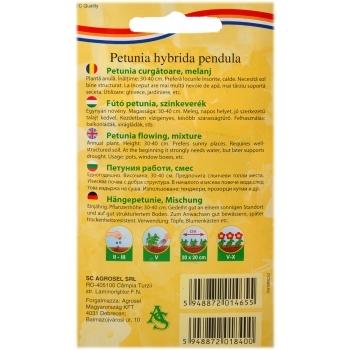 Seminte Petunie curgatoare melanj(0.75 gr) Agrosel #2