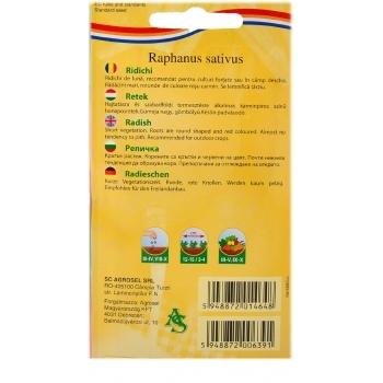 Seminte ridichi Riesenbutter(6 gr) Agrosel #2