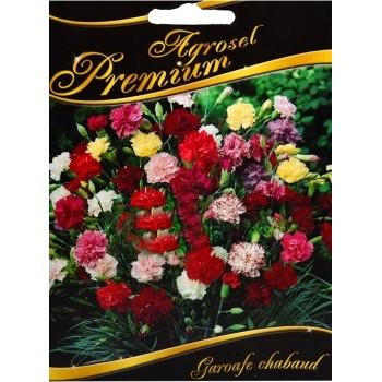 Seminte flori Garoafe Chabaud mix(0.50 gr) Agrosel