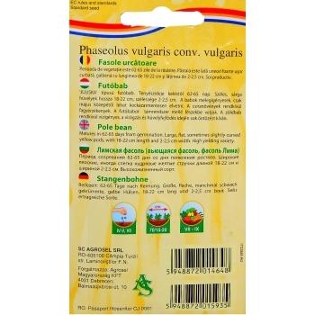 Seminte fasole urcatoare Ecaterina(20 gr) Agrosel, 3PG #3