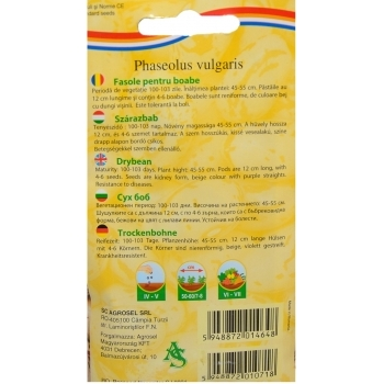 Seminte fasole pentru boabe Stregonta Nano (25 gr) Agrosel #2