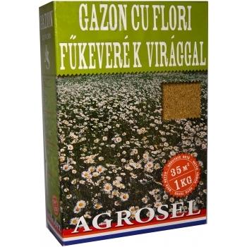 Seminte gazon cu flori(1 kg) Agrosel