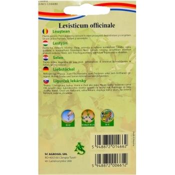 Seminte Leustean(1 gr) Agrosel, 2PG #2
