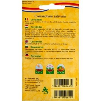 Seminte Coriandru(5 gr) Agrosel #2