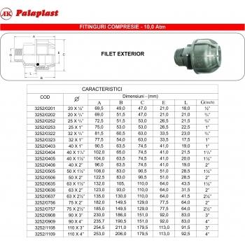Racord FE 63x2 1/2'', Palaplast #2