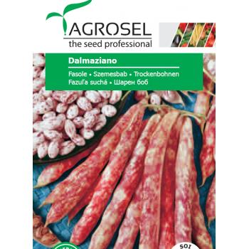 Seminte fasole Dalmaziano (25gr), Agrosel