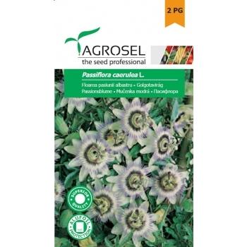 Seminte Floarea pasiunii de culoare  albastru,  (0.35g), Agrosel, 2PG