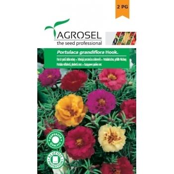 Seminte Flori de piatra,  dublu melanj (0.6gr), Agrosel