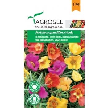 Seminte Flori de piatra,  simplu melanj (0.6gr), Agrosel, 2PG