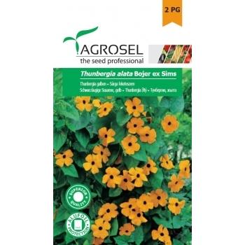 Seminte Thunbergia galben (1gr), Agrosel
