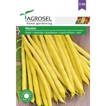 Seminte Fasole Maxidor (50gr), 5PG Agrosel