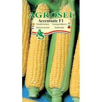 Seminte Porumb dulce Accentuate F1, (75 sem), Agrosel