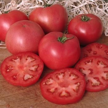 Seminte tomate Fenda  F1 (250 sem), Clause