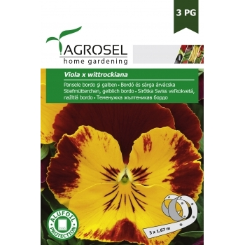 Seminte Pansele bordo-galben (0.5gr), Agrosel