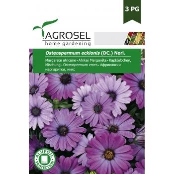 Seminte Margarete africane (0.5 gr), Agrosel