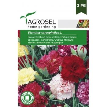 Seminte Garoafe Chabaud dublu melanj (0.5 gr), Agrosel